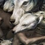 El arte de Ryohei Hase | Noviembre Nocturno 43