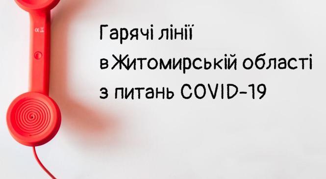 """""""Гарячі лінії"""" з питань COVID-19 у Житомирській області"""