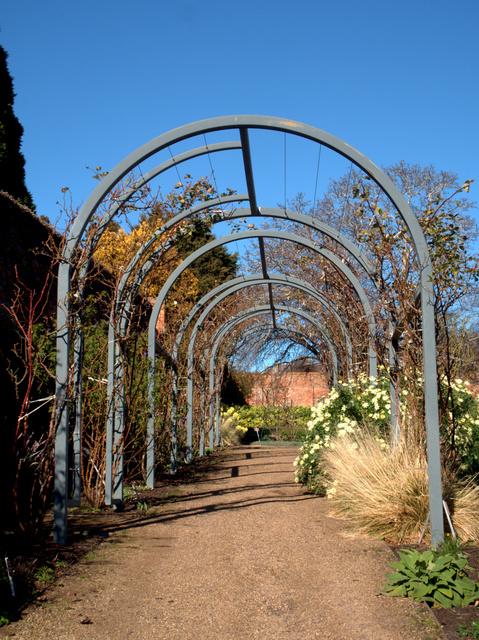 An impressive arbour in the herbaceous border, Royal Tasmanian Botanical Gardens
