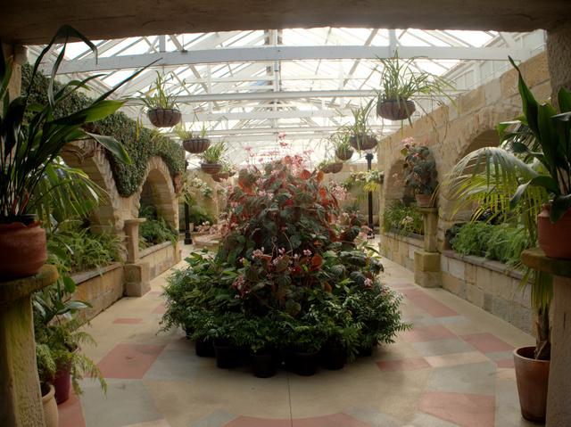 The Conservatory at the Royal Tasmanian Botanical Gardens