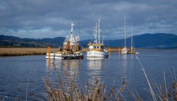 Fishing boats at Franklin on the Huon River, Tasmania