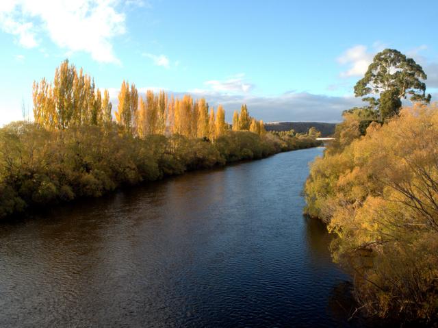 The River Derwent at Bushy Park in autumn