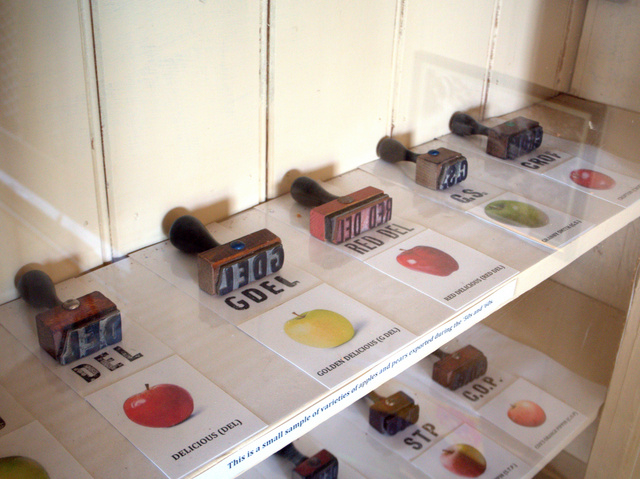 Stamps used to identify apple varieties on packing cases