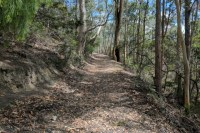 The Kaoota Tramway Track follows the route of a tramway built to bring coal from the mines above Margate