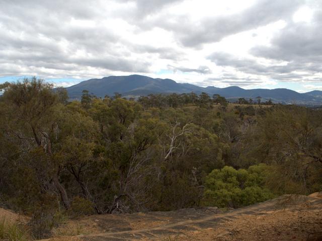Mount Wellington - kunanyi from the Waverley Flora Park