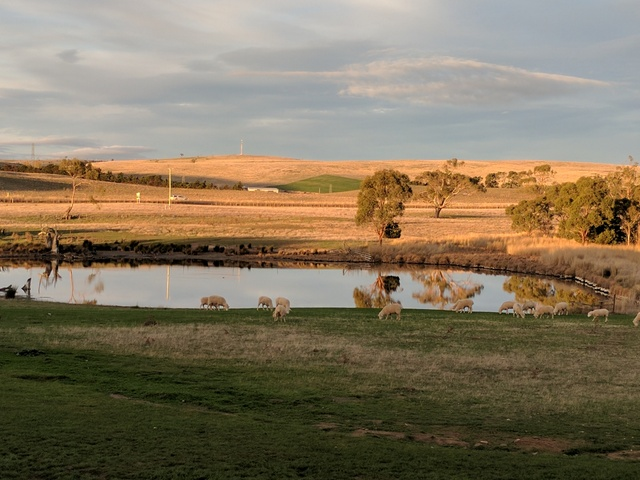 Sunset at Curringa Farm