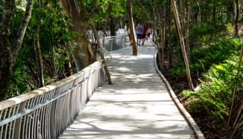 Boardwalk from Noosa Main Beach towards the National Park