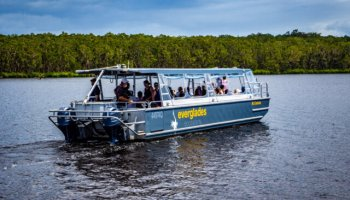 One of the two vessels undertaking our tour of the 'Noosa Everglades'