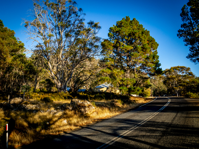 The Lake Highway at Steppes Homestead, central Tasmania
