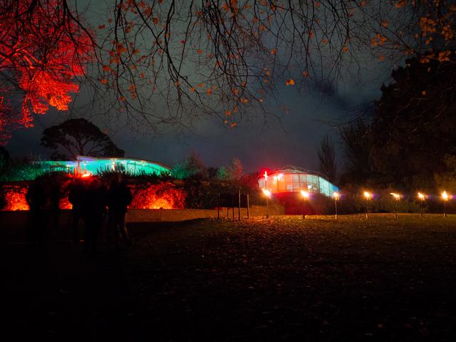 The Royal Tasmanian Botanical Gardens during Dark Mofo 2019
