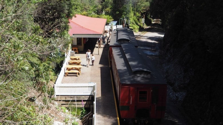 The West Coast Wilderness Railway arrives at Rinadeena Station after climbing using the Abt Rack and Pinion system