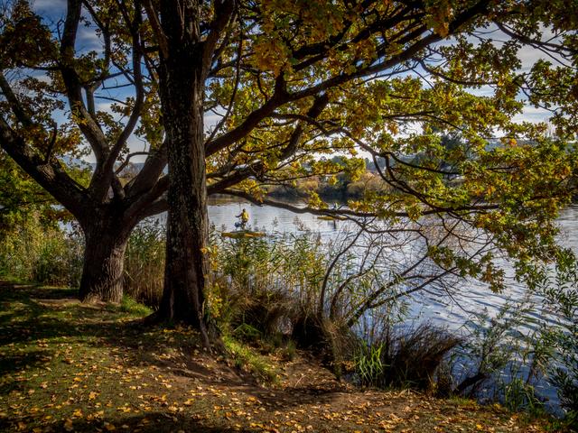 Autumn on the Esplanade at New Norfolk