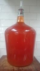 10L STARWBERRY WINE Recipe available in Recipe Archive