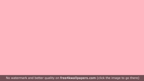 Pink Chanel wallpapers HD wallpaper Collections