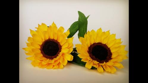 ABC TV How To Make Sunflower Paper Flower From Crepe