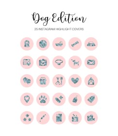 dog highlight covers teal
