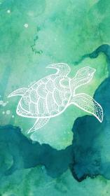 Turtle Love Wallpaper Background I Made by University Tees