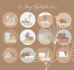 aesthetic story nature ig highlight covers flower icons flowers collage dry highlights dried paper