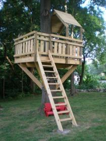 tree diy plans dream fort simple treehouse backyard houses forts adult cool cozy morningchores adulthood childhood reality playground