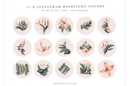 highlight pink covers highlights crella icons floral watercolor kit botanical graphic flower subscription story template sign