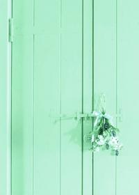 mint aesthetic pastel aqua flowers colors pastels background verde go sea orange spring sign things visit wall colored discover