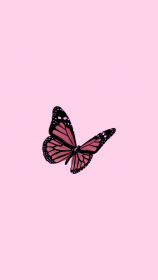 aesthetic butterfly iphone gold rose pastel background phone patterns wallpapers backgrounds
