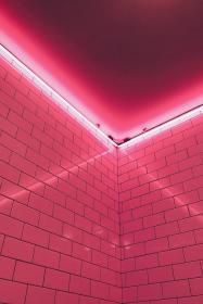 pink aesthetic led neon collage link