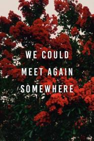 quotes harry songs lyrics song times somewhere meet again aesthetic could quote pc 70s don landscape sad wallpapers rules apply
