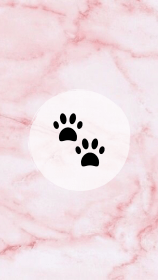 instagram highlight highlights covers story icon icons pets insta quotes feed fondos template