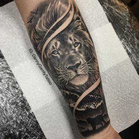 Men's forearm sleeve tattoo, lion with silhouette in
