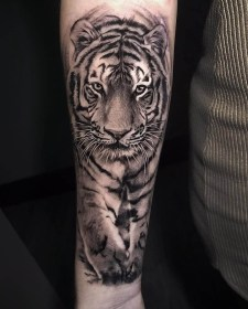 tiger tattoo tattoos meaning face leopard lion head animal sleeve meanings fierce forearm arm medium wolf tribal thigh mens shine
