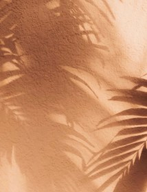 Aesthetic Light Brown Wallpapers Top Free Aesthetic