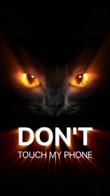 touch dont phone wallpapers don iphone backgrounds cat background phones funny screen mobile wall using 1334 wallpapercave