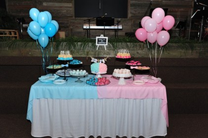 reveal gender table dessert bbq party decorations baby cake pink shower themes delectable choices filled course many