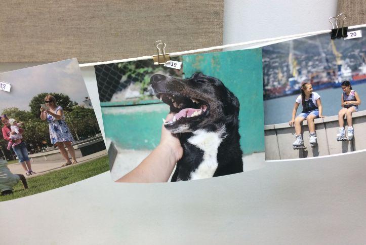 веселая собака фотомарафон
