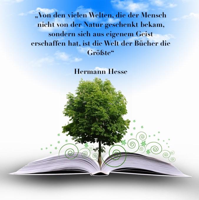 shutterstock_novum_open_book