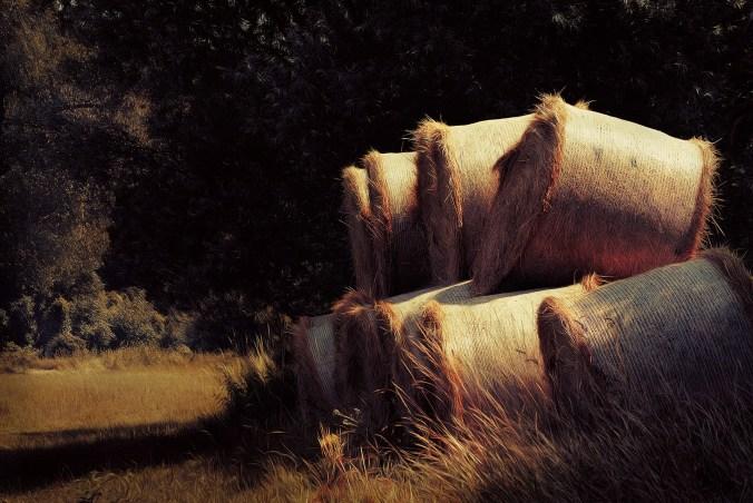 haystack-768757_1920
