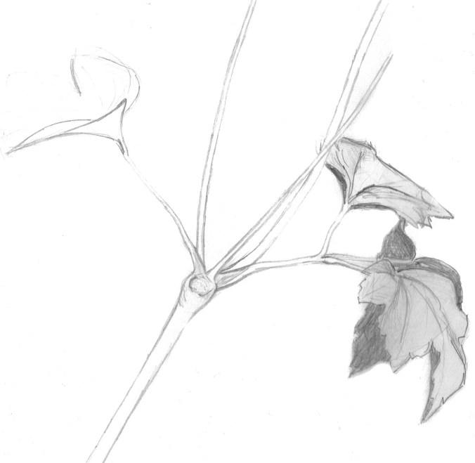 Skizzen zeichnen