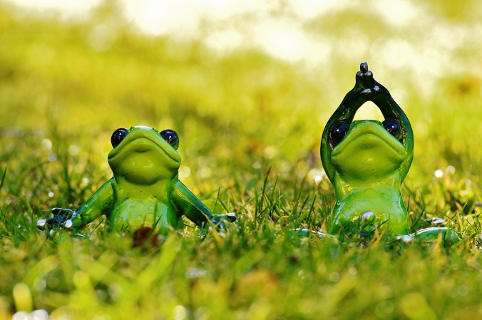 frogs-1109776_1920