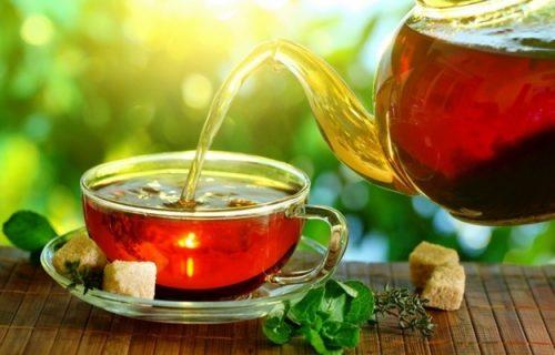 Десять лучших видов чая, которые должны быть у вас на кухне