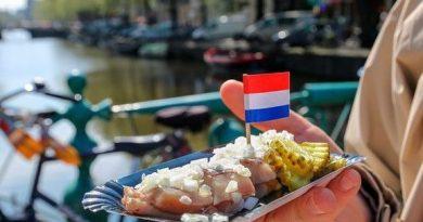 Национальная кухня Нидерландов