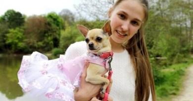 Девушка, которая тратит тысячи долларов на наряды для своей собаки