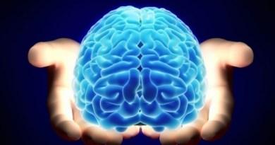 60 советов по улучшению работы мозга