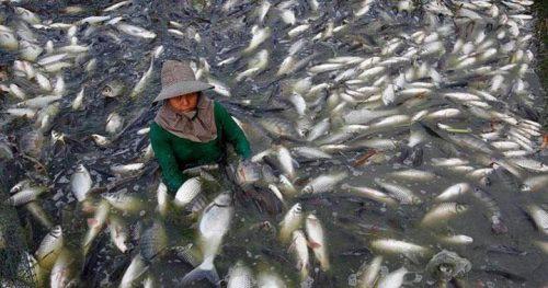 20 Мега-опасных продуктов из Китая, которых лучше избегать любой ценой