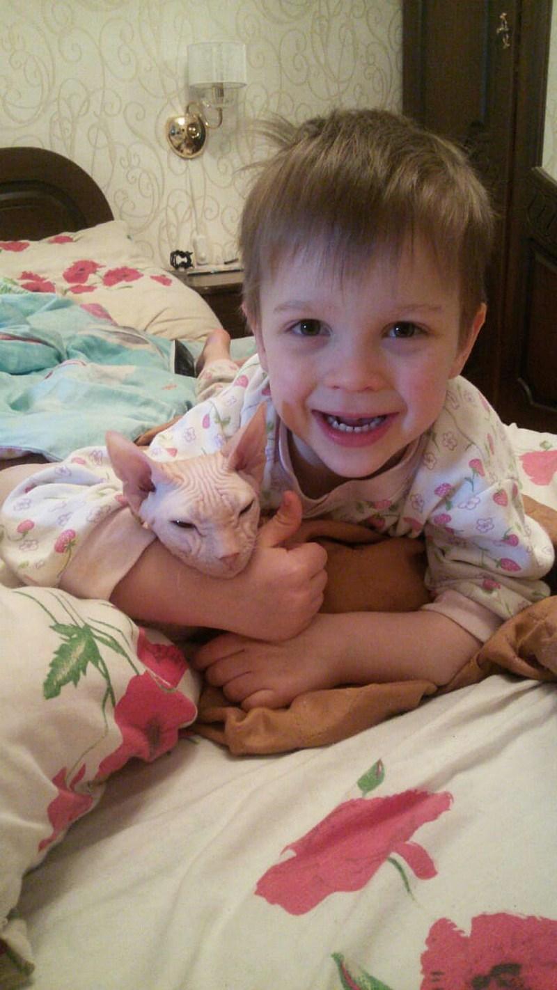 6-летний Ваня и его папа спасли уже больше 100 кошек и собак