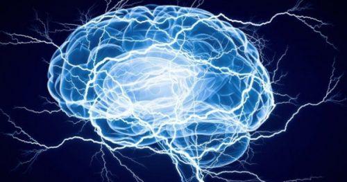 Почему мозг людей уменьшается