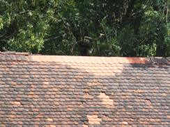 Detail střechy