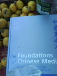 This textbook by Giovanni Maciocia is a very interesting read. If you are interested in learning more about Chinese medicine you could order a copy from ChinaBooks in Melbourne or take a look for it on Amazon.
