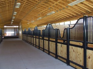 The Stalls in the Main Barn