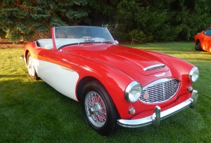 The Austin Healey was designed by racing legend Donald Healey starting back in 1951.